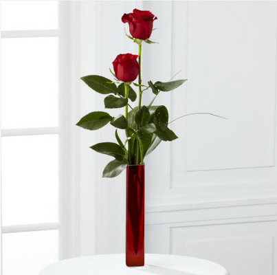 Two Roses in a Bud Vase R824 from Fabbrini's Flowers in Hoffman Estates, IL