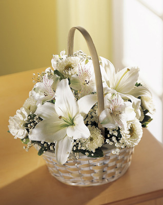 Small All White Basket S128