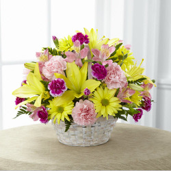 Basket of Cheer E114 from Fabbrini's Flowers in Hoffman Estates, IL