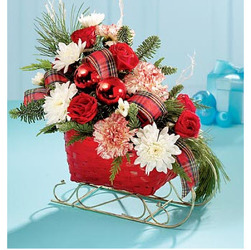 ch1049 Winter Sleigh from Fabbrini's Flowers in Hoffman Estates, IL