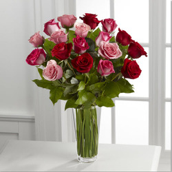 Mixed Two Dozen Pink and Red  R813 from Fabbrini's Flowers in Hoffman Estates, IL