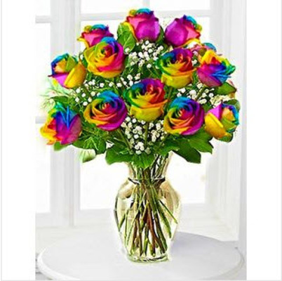 Tie Dyed Dozen from Fabbrini's Flowers in Hoffman Estates, IL