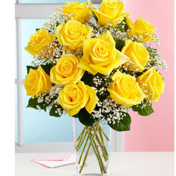 Classic Dozen Yellow  from Fabbrini's Flowers in Hoffman Estates, IL
