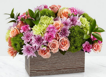 EA108 Pastels In A Box from Fabbrini's Flowers in Hoffman Estates, IL