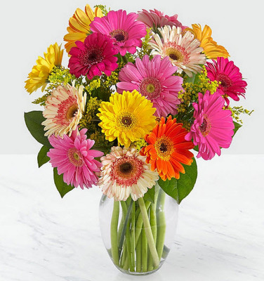 ES102 mixed gerbera daisies in vase from Fabbrini's Flowers in Hoffman Estates, IL