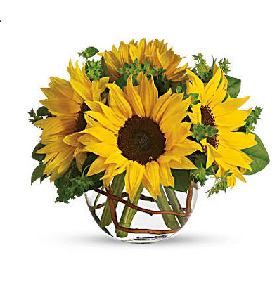 F112 sunflowers in bubble bowl from Fabbrini's Flowers in Hoffman Estates, IL