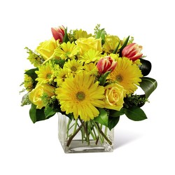 M104 yellow square vase from Fabbrini's Flowers in Hoffman Estates, IL