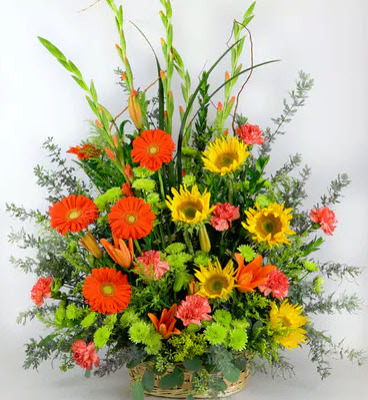 S220 Fall Fanback - Basket from Fabbrini's Flowers in Hoffman Estates, IL