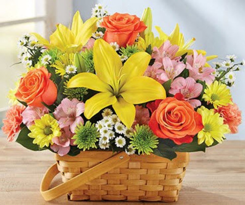 S257 Ray of sunlight basket arrangement from Fabbrini's Flowers in Hoffman Estates, IL