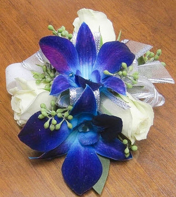 WC105 Blue Bomb Orchid & White Spray Rose Wrist Corsage from Fabbrini's Flowers in Hoffman Estates, IL