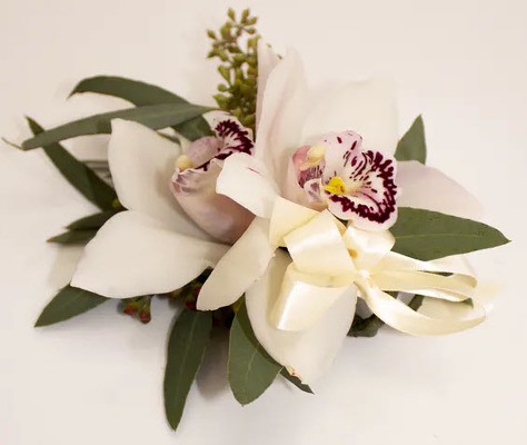 WC107 White Cymbidium Orchid Wrist Corsage from Fabbrini's Flowers in Hoffman Estates, IL