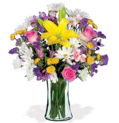 WD105 All You Do from Fabbrini's Flowers in Hoffman Estates, IL