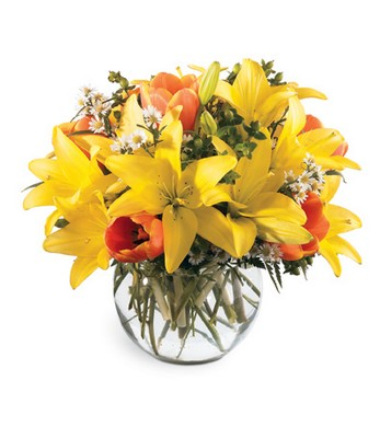 All Is Bright Bouquet from Fabbrini's Flowers in Hoffman Estates, IL