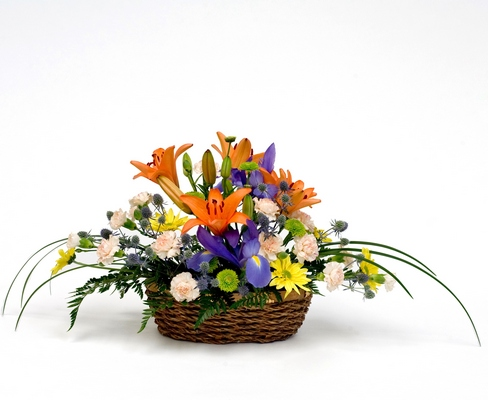 Basket arrangement B205 from Fabbrini's Flowers in Hoffman Estates, IL