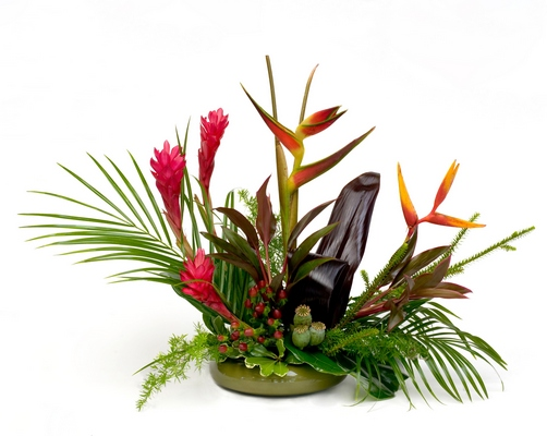 Tropical arrangement B208 from Fabbrini's Flowers in Hoffman Estates, IL