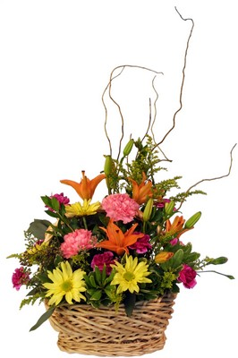 ES111 spring basket from Fabbrini's Flowers in Hoffman Estates, IL