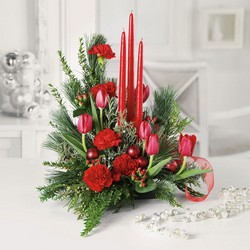 Christmas buffet centerpiece C108 from Fabbrini's Flowers in Hoffman Estates, IL