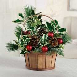 Holiday basket C106 from Fabbrini's Flowers in Hoffman Estates, IL